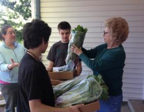 Vegetabels for Seniors